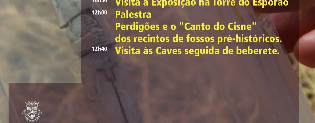 DiaAbertoPerdiges_F_0_1592560534.