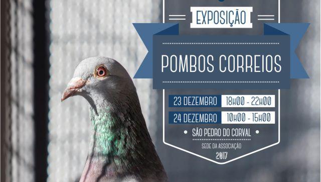 Exposiodepomboscorreio_C_0_1592558562.