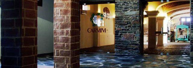 CARMIM (18)_jpg