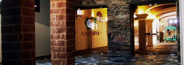 CARMIM (19)_jpg